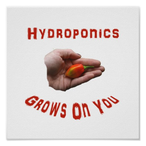 Hydroponics Grows on you Habanero Pepper Hand Posters