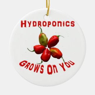 Hydroponics Grows On You habanero star Round Ceramic Decoration