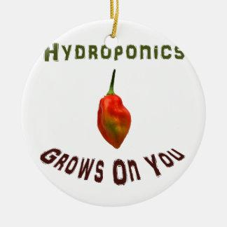 Hydroponics Grows On You Single Habanero Round Ceramic Decoration