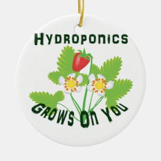 Hydroponics Grows On You Strawberries Round Ceramic Decoration