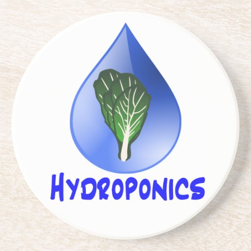 Hydroponics slogan Blue Drop with Lettuce graphic Coasters