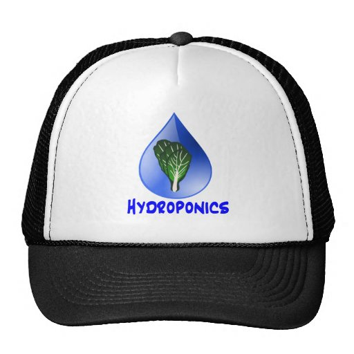 Hydroponics slogan Blue Drop with Lettuce graphic Trucker Hat