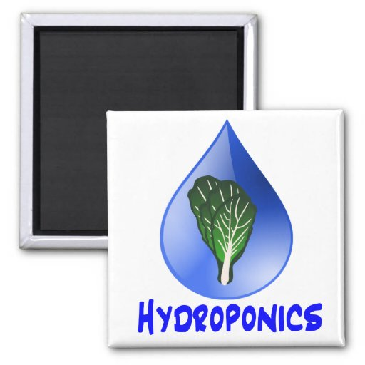 Hydroponics slogan Blue Drop with Lettuce graphic Refrigerator Magnet