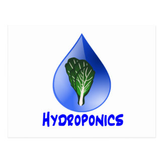 Hydroponics slogan Blue Drop with Lettuce graphic Postcard