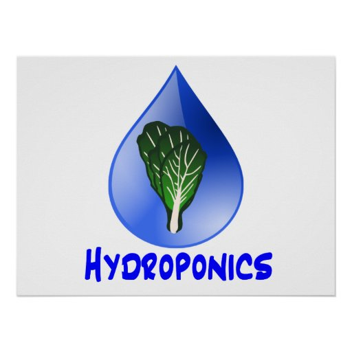 Hydroponics slogan Blue Drop with Lettuce graphic Posters