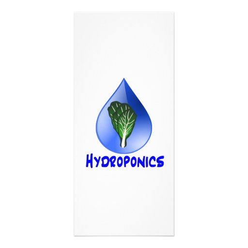 Hydroponics slogan Blue Drop with Lettuce graphic Rack Card Design