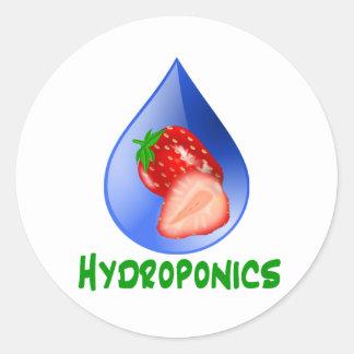 Hydroponics, strawberries, green text, blue drop round sticker