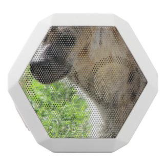 Hyena White Boombot Rex Bluetooth Speaker