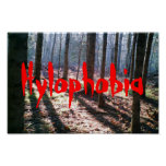 Hylophobia Remote Forest Swamp edge UP Poster