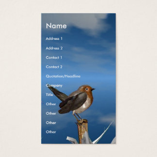 HYPER BIRDS / ROBIN RED BREAST BUSINESS CARD