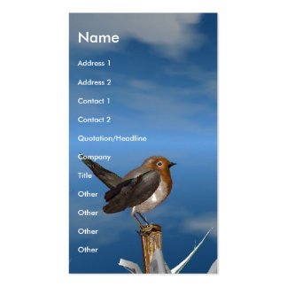 HYPER BIRDS / ROBIN RED BREAST PACK OF STANDARD BUSINESS CARDS