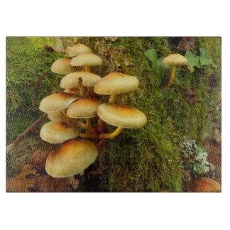 Hypholoma fasciculare Mushroom Chopping Board