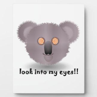 hypnotic koala plaque