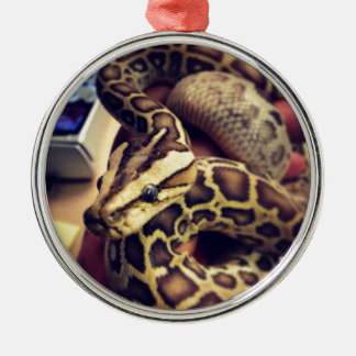 Hypo baby burmese python photo design. Silver-Colored round decoration