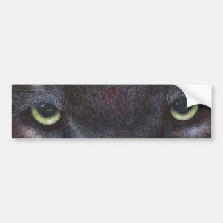 Hyptnotist Eyes Bumper Sticker