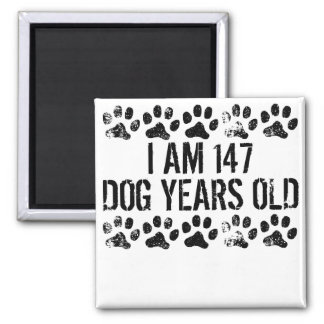 I Am 147 Dog Years Old Square Magnet