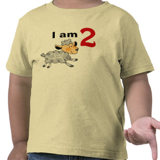 I am 2 years old today (cute little lamb) tee shirts