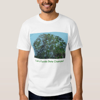 I am a Florida State Champion! T-shirt