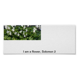 I am a flower posters