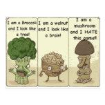 I am a mushroom