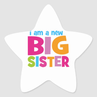I am a new Big Sister Star Sticker