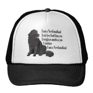 I am a Newfoundland Cap