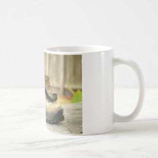 I am a proud Grandpa! Basic White Mug