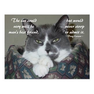 I Am Cat Post Cards