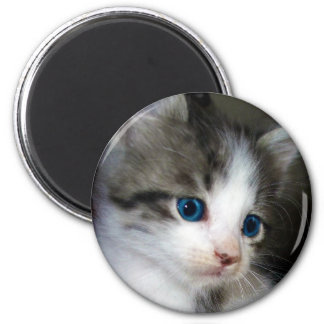 I AM CUTE FROM HEAD TO TOE 6 CM ROUND MAGNET