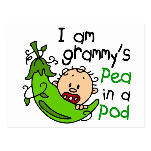 I am Grammy's Pea In A Pod Postcard