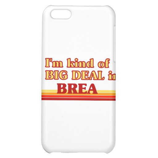 I am kind of a BIG DEAL in Brea iPhone 5C Case