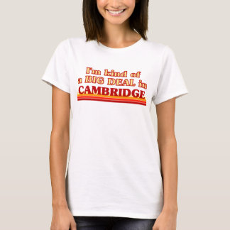 I am kind of a BIG DEAL in Cambridge T-Shirt
