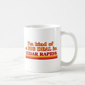 I am kind of a BIG DEAL in Cedar Rapids Mugs