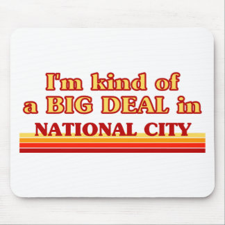 I am kind of a BIG DEAL in National City Mousepads