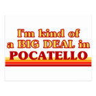 I am kind of a BIG DEAL in Pocatello Postcard