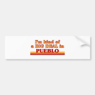 I am kind of a BIG DEAL in Pueblo Bumper Stickers