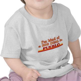 I am kind of a BIG DEAL in Pueblo T Shirts