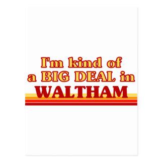 I am kind of a BIG DEAL in Waltham Postcard