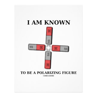 I Am Known To Be A Polarizing Figure (Quadrupole) 21.5 Cm X 28 Cm Flyer