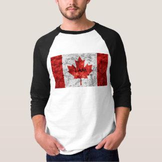 I AM Men,s Basic 3/4 sleeve Raglan t-shirt