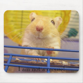 I am not a mouse! mouse mat