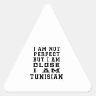 I Am Not Perfect But I Am Close I Am Tunisian Triangle Sticker