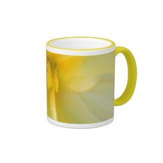 """I am..."" Ringer Mug"