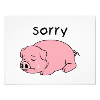 I am so Sorry Crying Weeping Pink Pig Stamp Cards Art Photo