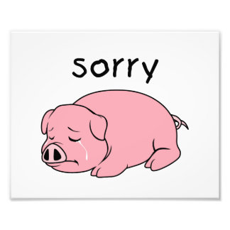 I am so Sorry Crying Weeping Pink Pig Stamp Cards Photo
