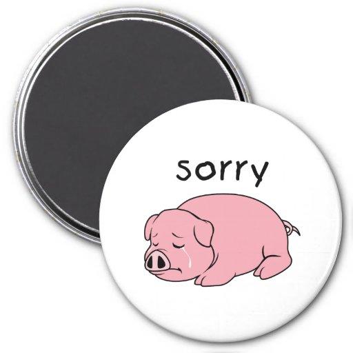 I am Sorry Crying Weeping Pink Pig Card Mug Button Fridge Magnet