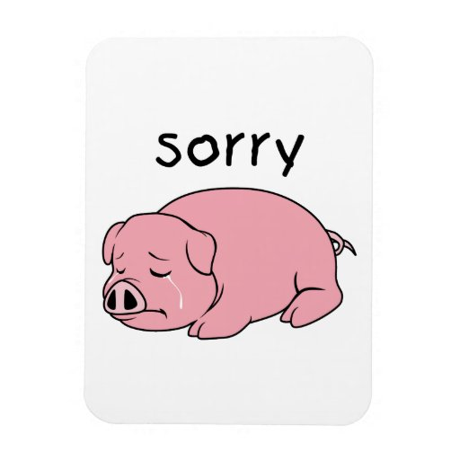 I am Sorry Crying Weeping Pink Pig Card Mug Button Flexible Magnet