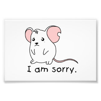 I am Sorry Crying Weeping White Mouse Mug Pillow Photo Print