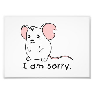 I am Sorry Crying Weeping White Mouse Mug Pillow Photographic Print