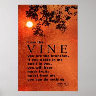 I am the VINE (John 15:5) Poster